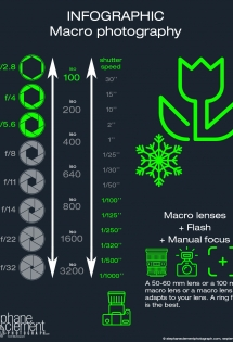 infographic macro photography